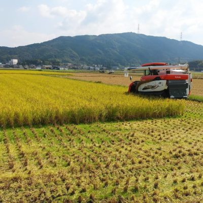 玄米食味コンテスト GⅠグランプリ本戦(最終審査)へ進出?
